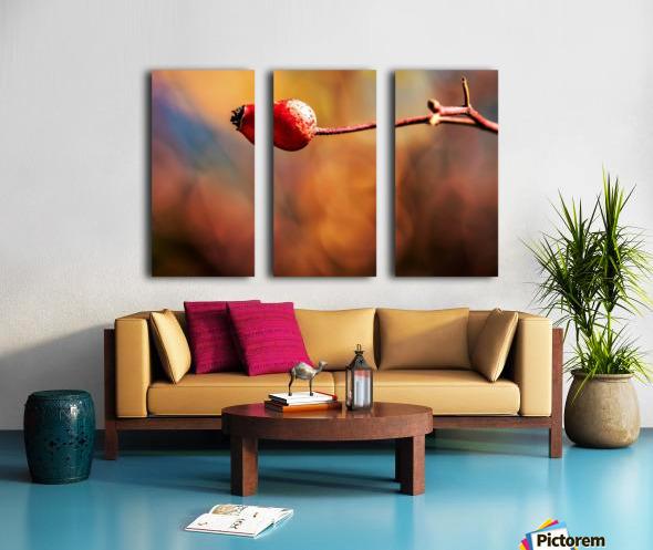 Red bud Split Canvas print