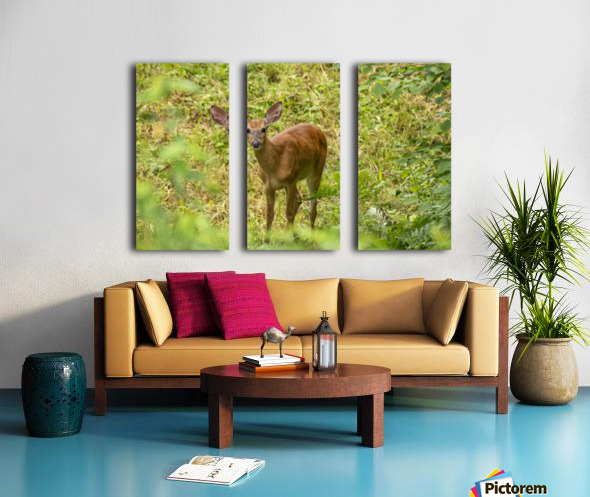Oh Deer Split Canvas print
