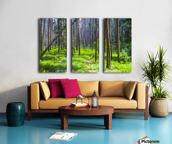 Density Split Canvas print