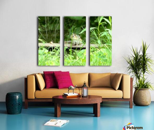 20190916_180230 Split Canvas print
