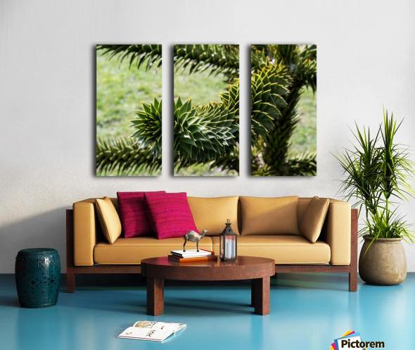 Plant Image Split Canvas print