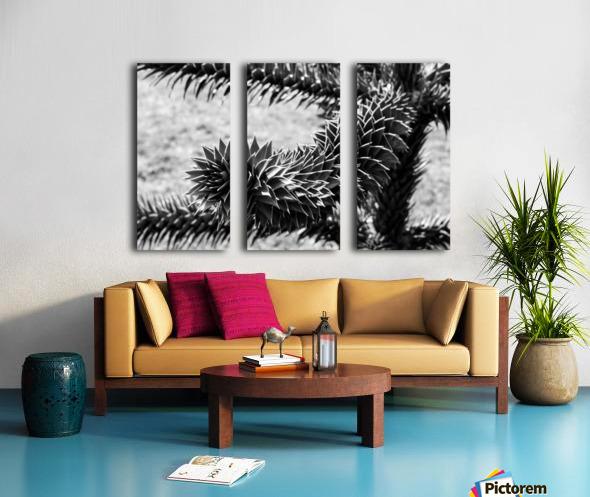 Plant Image BW Split Canvas print