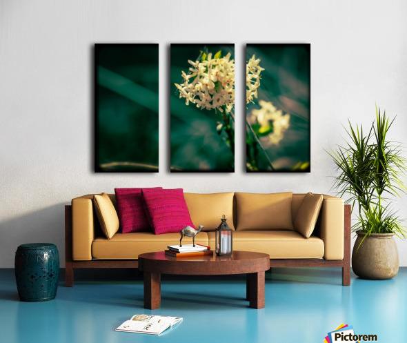 Rice Flower Split Canvas print