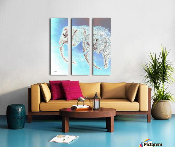 2 Elephants Split Canvas print
