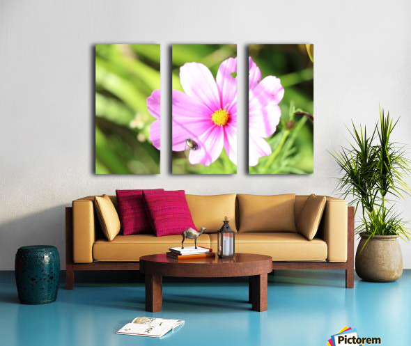 Flower Bug Split Canvas print