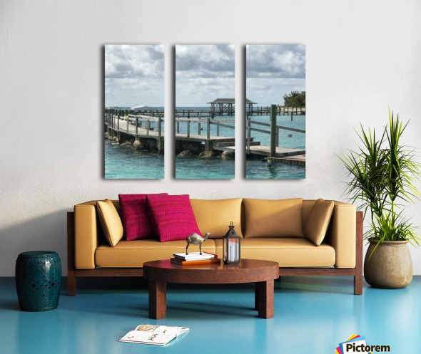 Dolphin Cove Split Canvas print