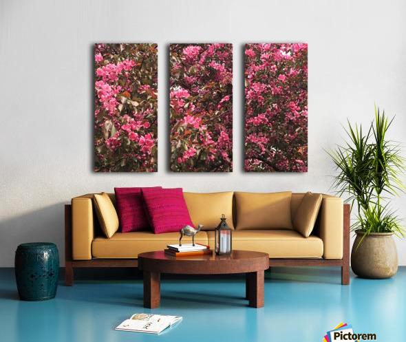Flowering Tree Split Canvas print