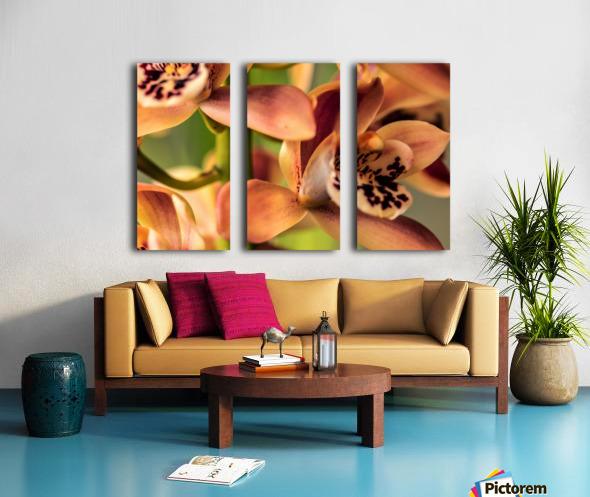 Blush Orchids Split Canvas print
