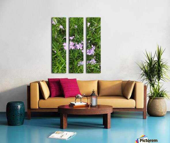 Purple Wild flowers Split Canvas print
