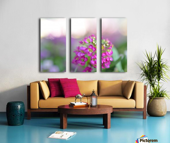 Pink Flowers Soft Photography Split Canvas print