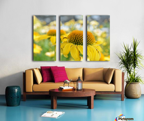 Yellow Flowers Photography Split Canvas print