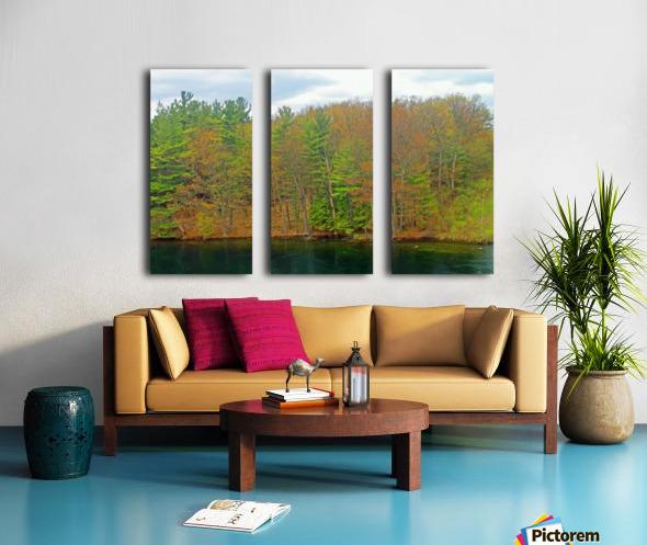 Lively Trees Split Canvas print