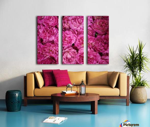 ROSE GARDEN   Split Canvas print
