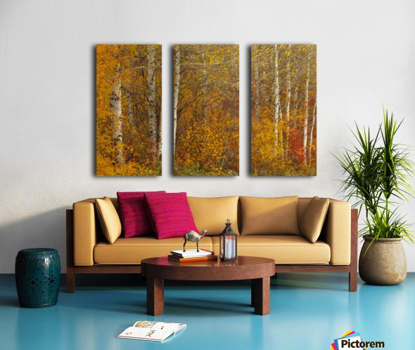 Oil Painting Split Canvas print