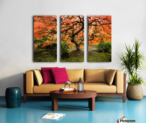 autumn bliss Split Canvas print