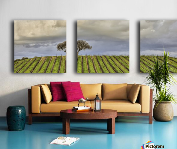 Commited Split Canvas print