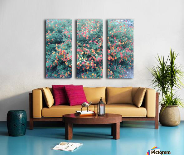Summer red flowers Split Canvas print