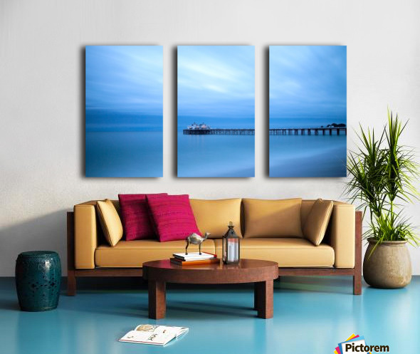 Frozen Split Canvas print