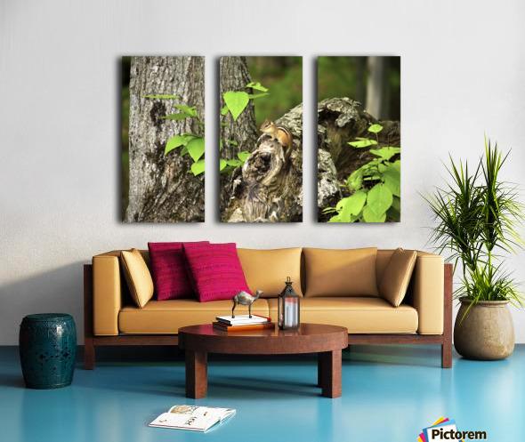 Chipmunk on tree Split Canvas print