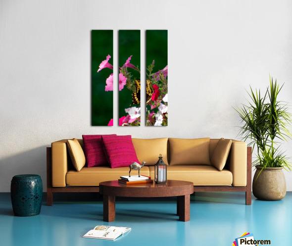 Butterfly on petunias Split Canvas print