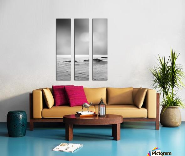 The Silence Split Canvas print