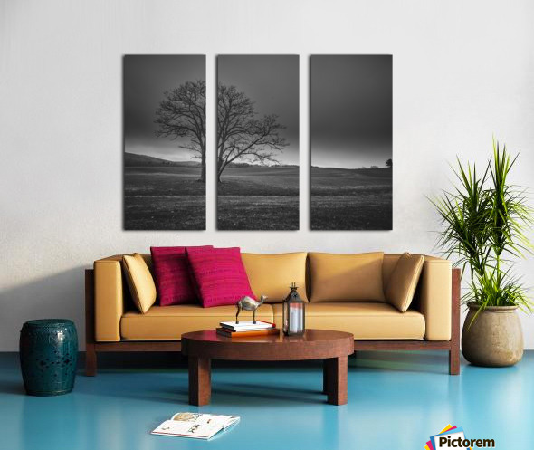 November Tree Split Canvas print