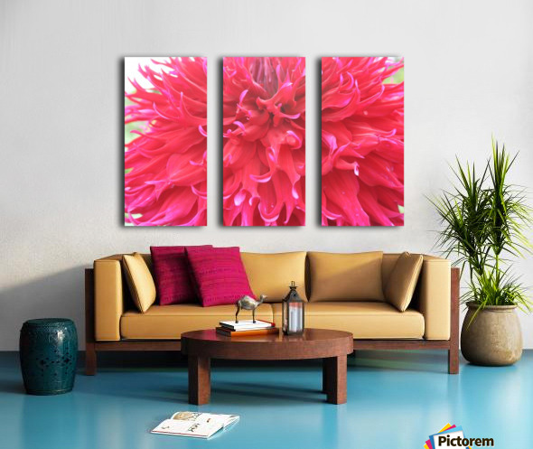 IMG_0710 Split Canvas print