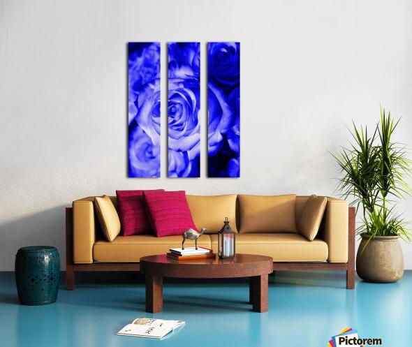 Rose blue Split Canvas print