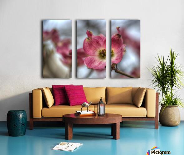 Spring Flowers Split Canvas print