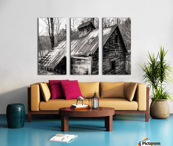 Abandoned Shack 6 Split Canvas print