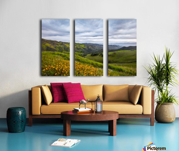 California is home Split Canvas print