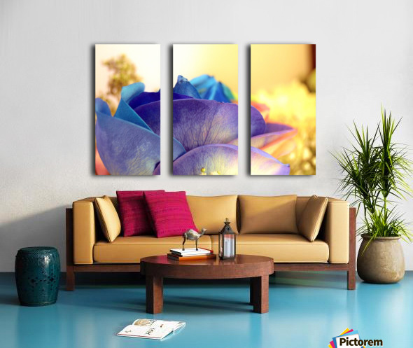 Colourful Days Split Canvas print