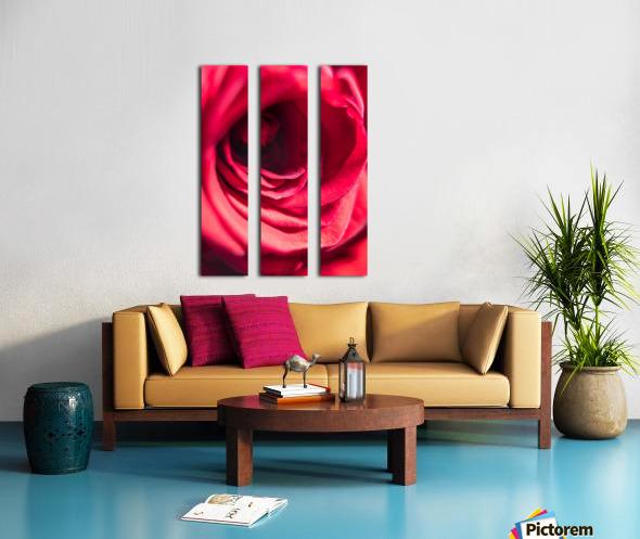 Red 2 Split Canvas print