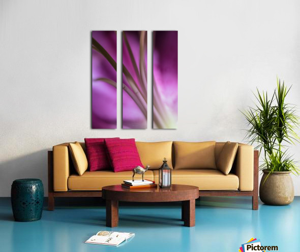 Pinky 5 Split Canvas print