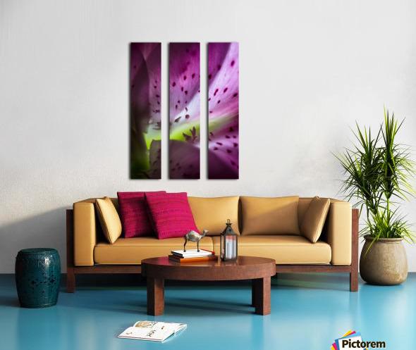 Pinky 2 Split Canvas print