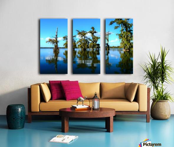 Reflect Much Split Canvas print