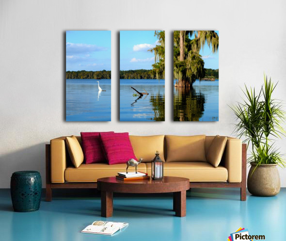 Swim or Not Split Canvas print