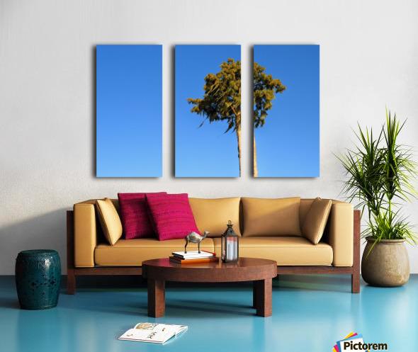 Windy  Split Canvas print