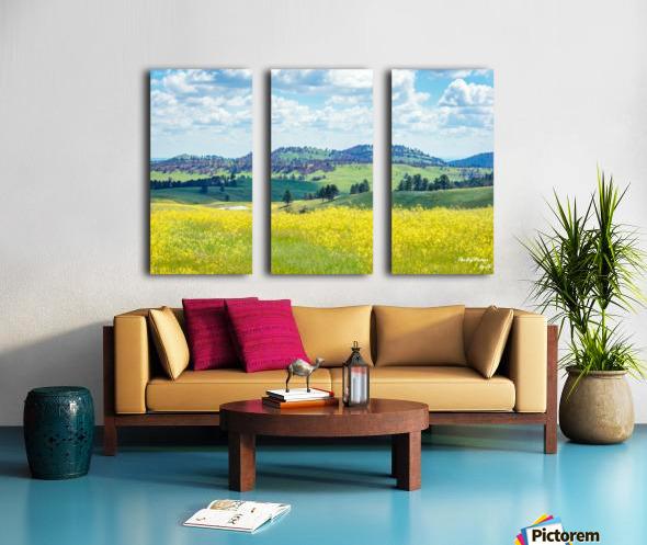Custer State Park Yellow Split Canvas print