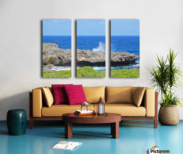 Rocky Ledge Split Canvas print