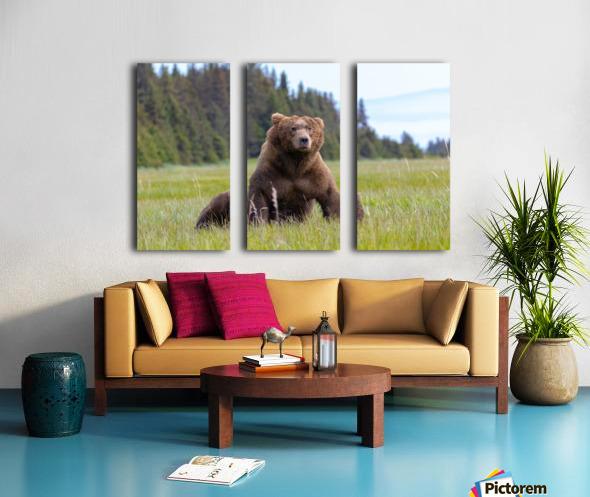 Big boy in the Meadow Split Canvas print