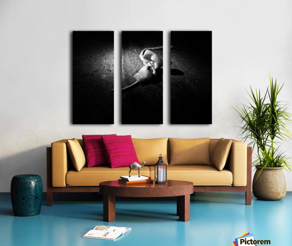 gets lost and cries for friends Split Canvas print