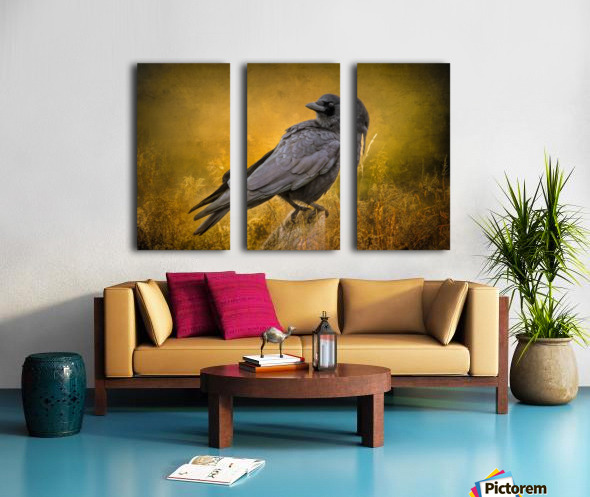 Black Crow Split Canvas print