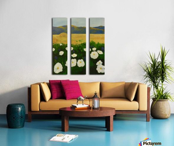 Poppies Split Canvas print