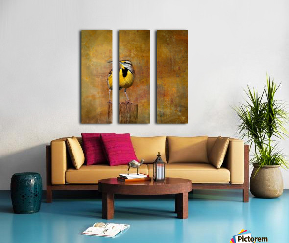 Eastern Meadowlark Split Canvas print