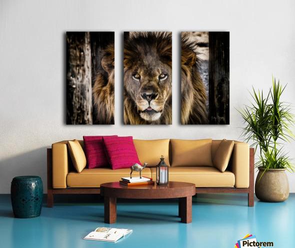 A Regal Lion Split Canvas print