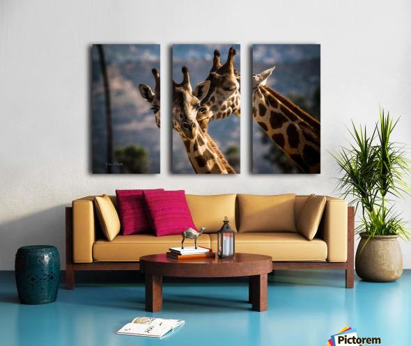 Loving Giraffes Split Canvas print