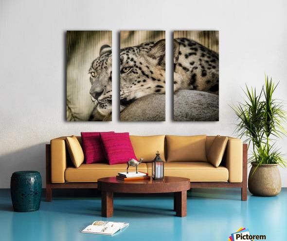 Snow Leopard Split Canvas print
