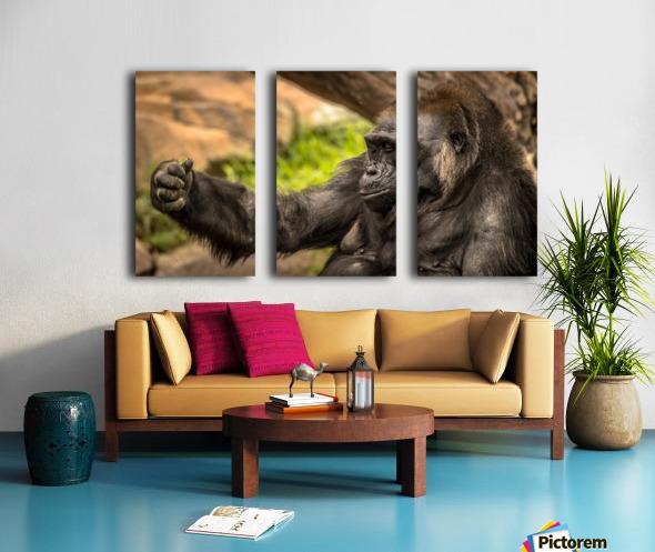 Quiet Gorilla Sleeping Split Canvas print