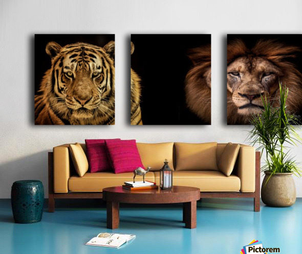 The Kings of Beasts - No Title Split Canvas print